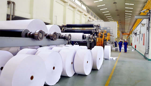 Giấy sơ đồ ngành dệt may Việt Nam